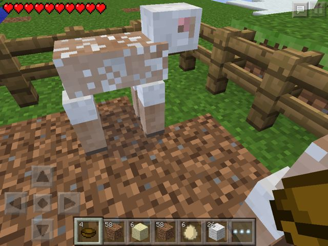 20140315_minecrafted2