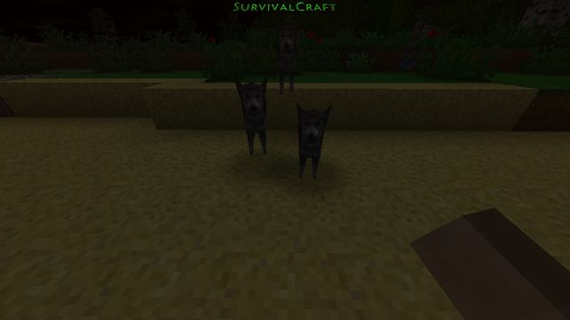 survival_craft_30