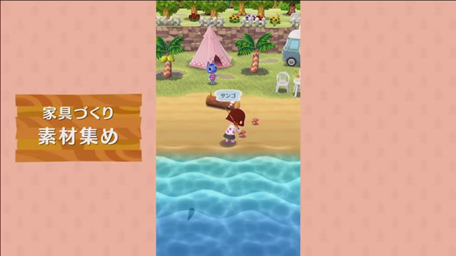 dmpocketcamp15
