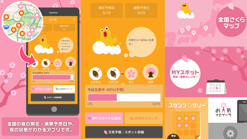 """Photo of We catch cherry tree information quickly! The """"Sakura App"""" that can grasp the expected flowering / full bloom date is super excellence… 