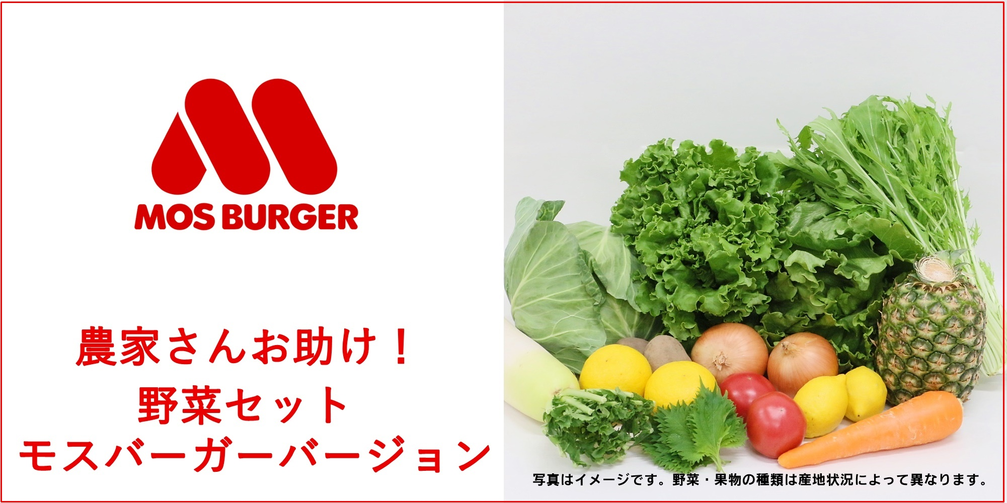 "Photo of Moss vegetables reach your home! ""Farmers help! Vegetable set Mos Burger version"" online sales started! 