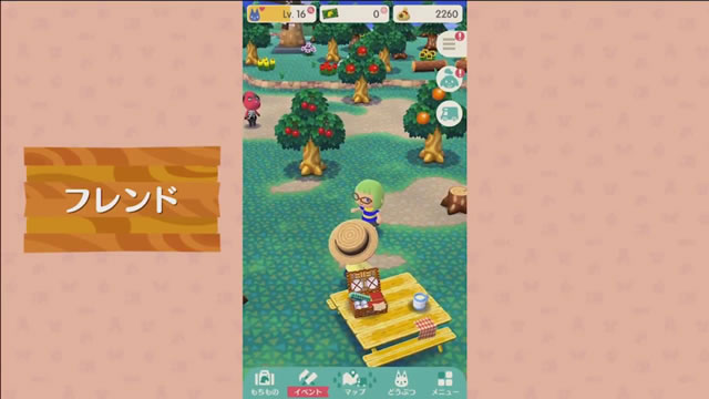 dmpocketcamp27