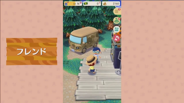 dmpocketcamp29