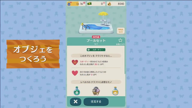 dmpocketcamp31